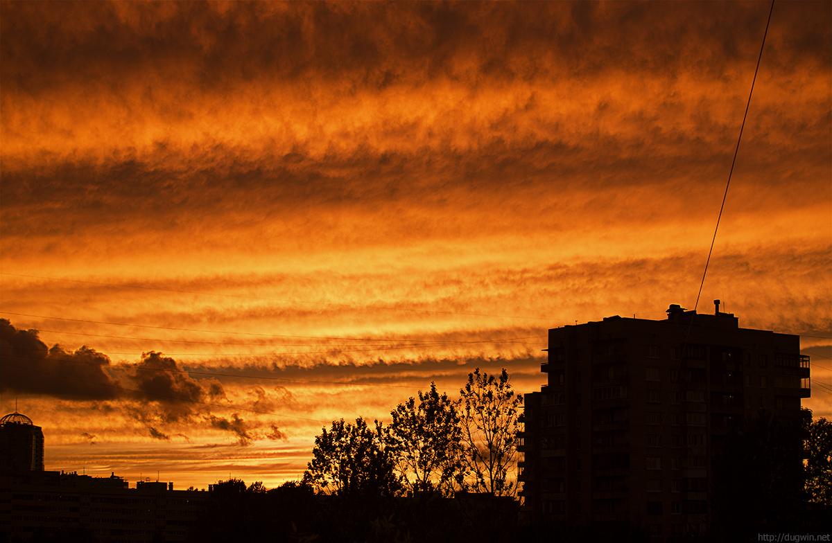 kuptchino sky